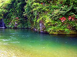 20090613kawa2.jpg