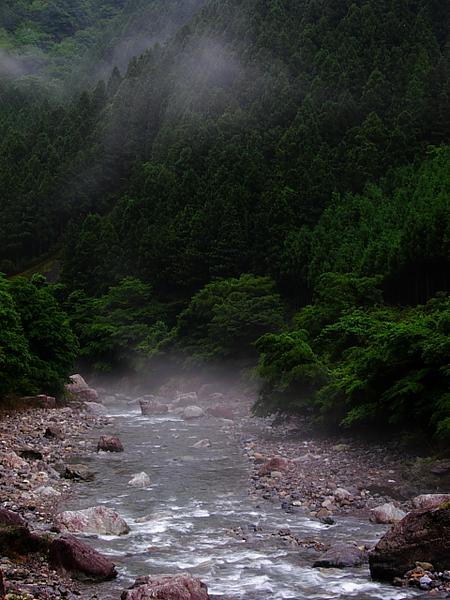 20100619kawa1.JPG