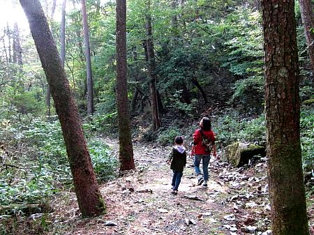 20111016walk.JPG