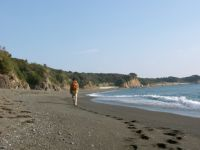 walk2.jpg